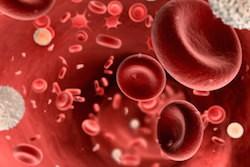 кровь схема