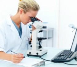 исследование под микроскопом