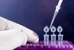 Анализ ПЦР на гепатит