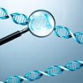 geneticheskij-analiza-krovi
