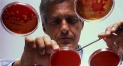 Исследование крови при лейкозе