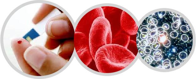 Расшифровка обозначений в анализе крови