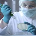 микроскопическое исследование мазка