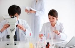 лейкоциты в мазке при беременности