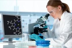 При лабораторном исследовании мазка на флору лептотрихии очень отчетливо видны под микроскопом.