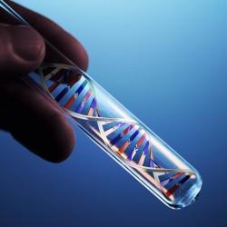 Если в исследуемом материале присутствует инфекция, тогда результат ПЦР будет носить отрицательный характер.